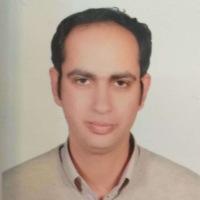 Dr. Waleed Hassan
